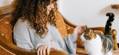 Featured image Inns that Allow Pets in North Yorkshire Yore Bridge House Bainbridge - Inns that Allow Pets in North Yorkshire